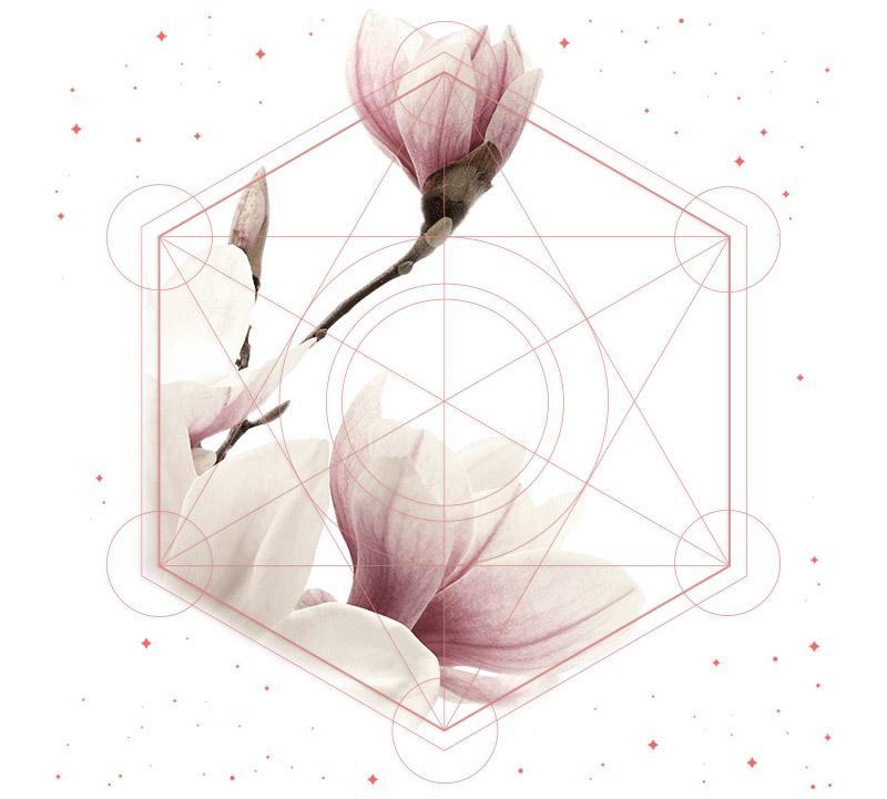 Reiki • lys - light your soul