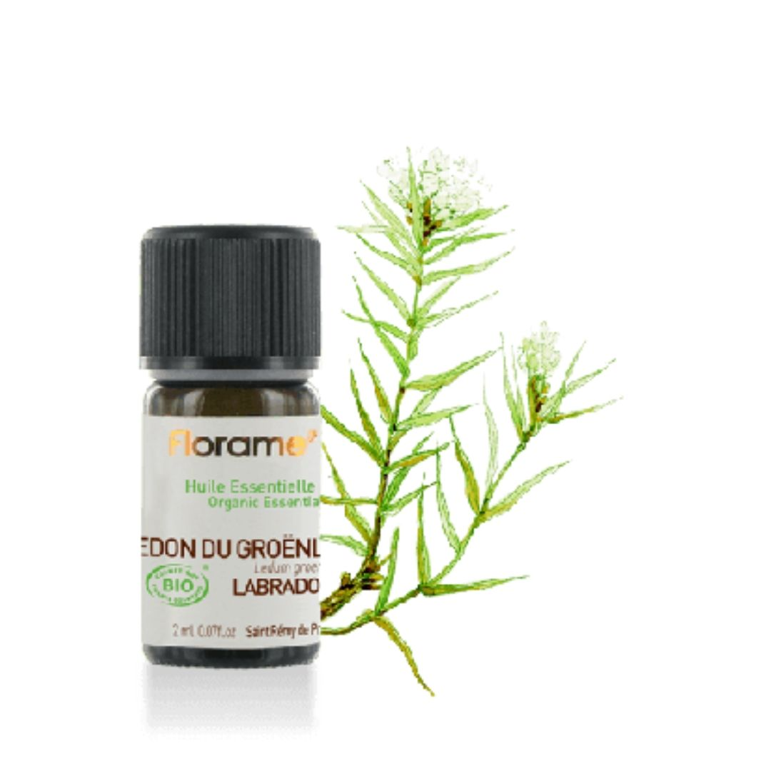lys-OE-Labrador-Tea-Bio