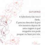 Lys - Saturno 2020